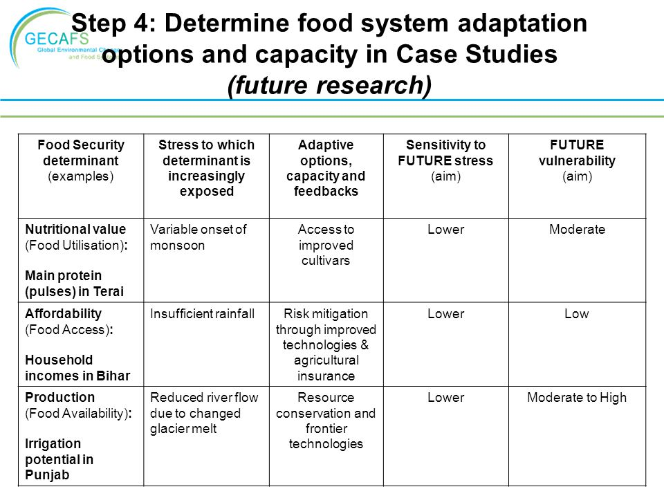 Step 4: Determine food system adaptation options and capacity in Case Studies