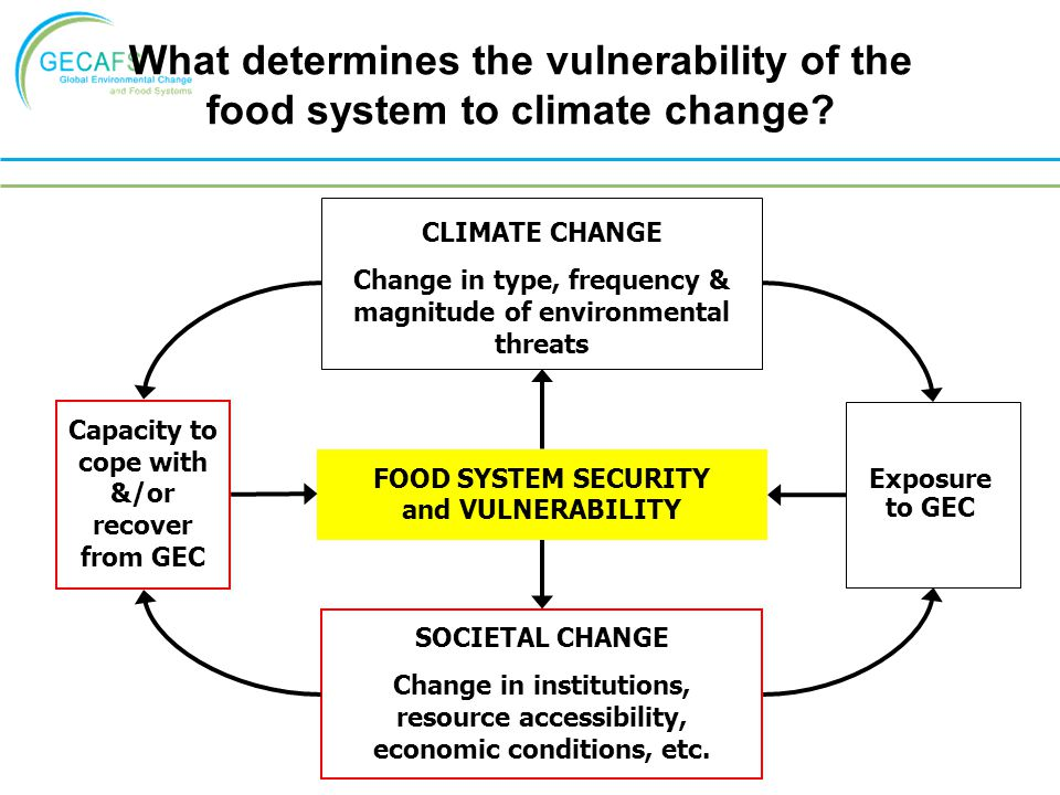 What determines the vulnerability of the food system to climate change