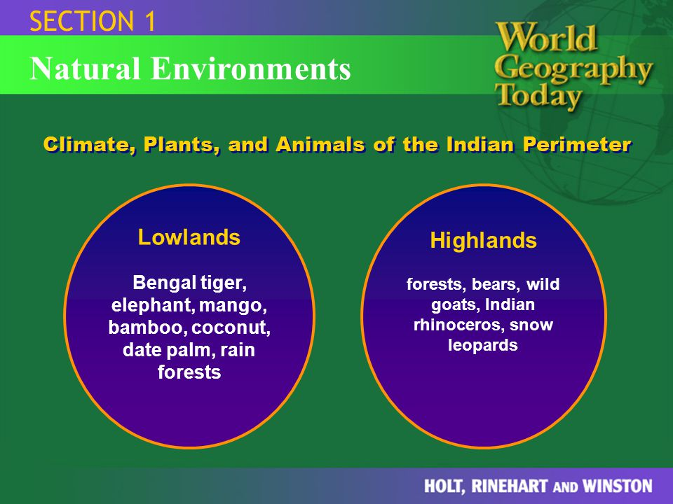 forests, bears, wild goats, Indian rhinoceros, snow leopards