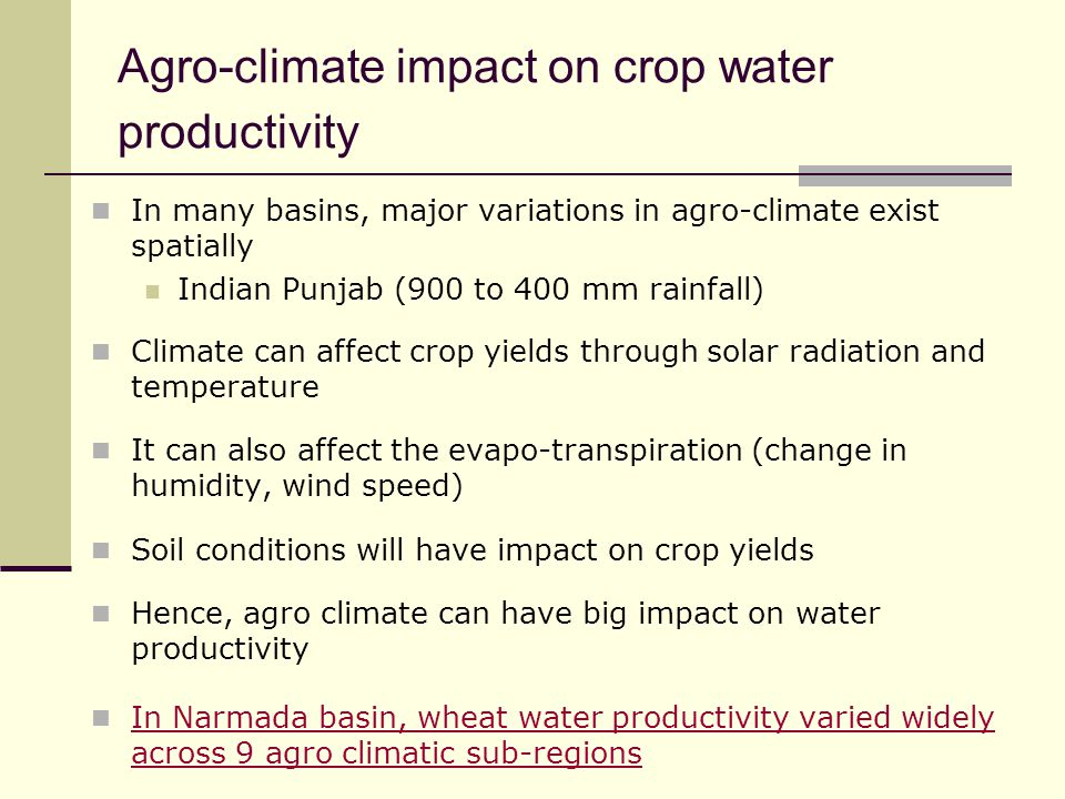 Agro-climate impact on crop water productivity