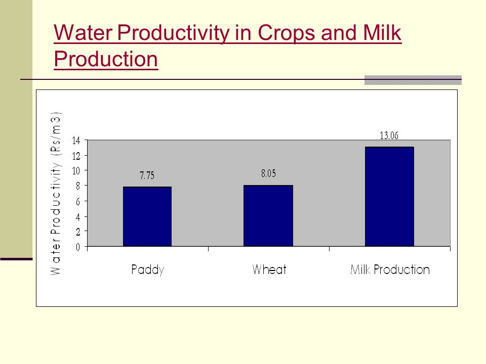 Water Productivity in Crops and Milk Production