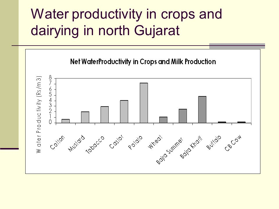 Water productivity in crops and dairying in north Gujarat