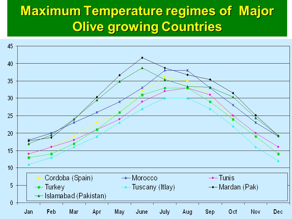 Maximum Temperature regimes of Major Olive growing Countries
