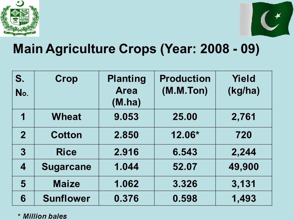 Main Agriculture Crops (Year: 2008 - 09)
