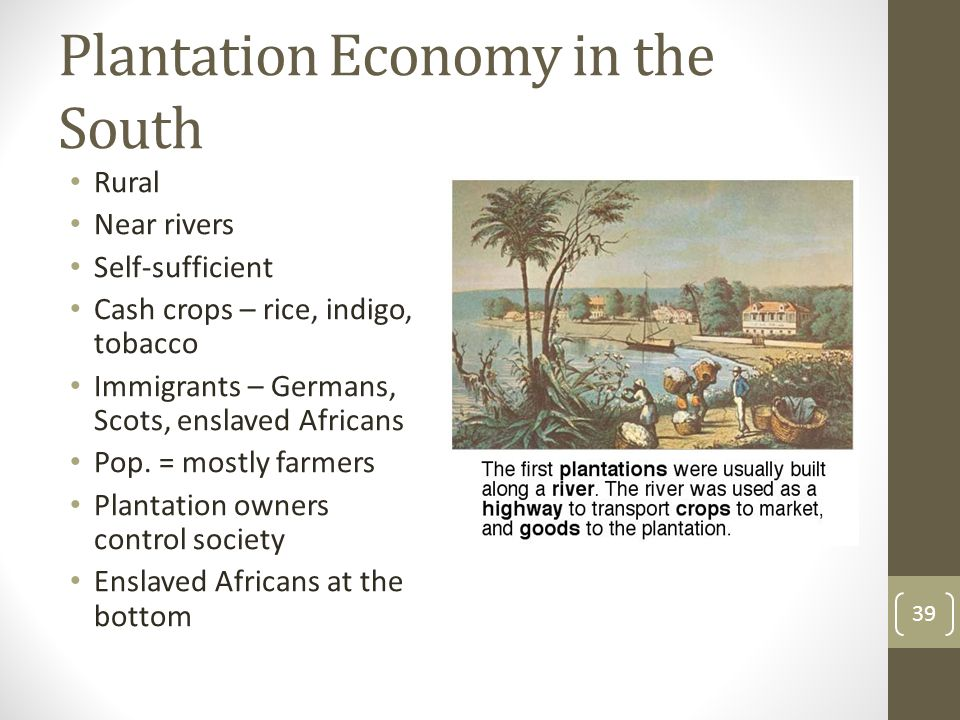 Plantation Economy in the South