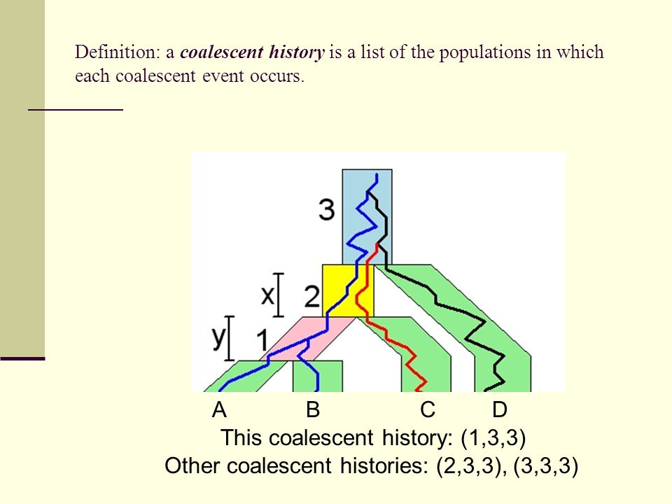 This coalescent history: (1,3,3)