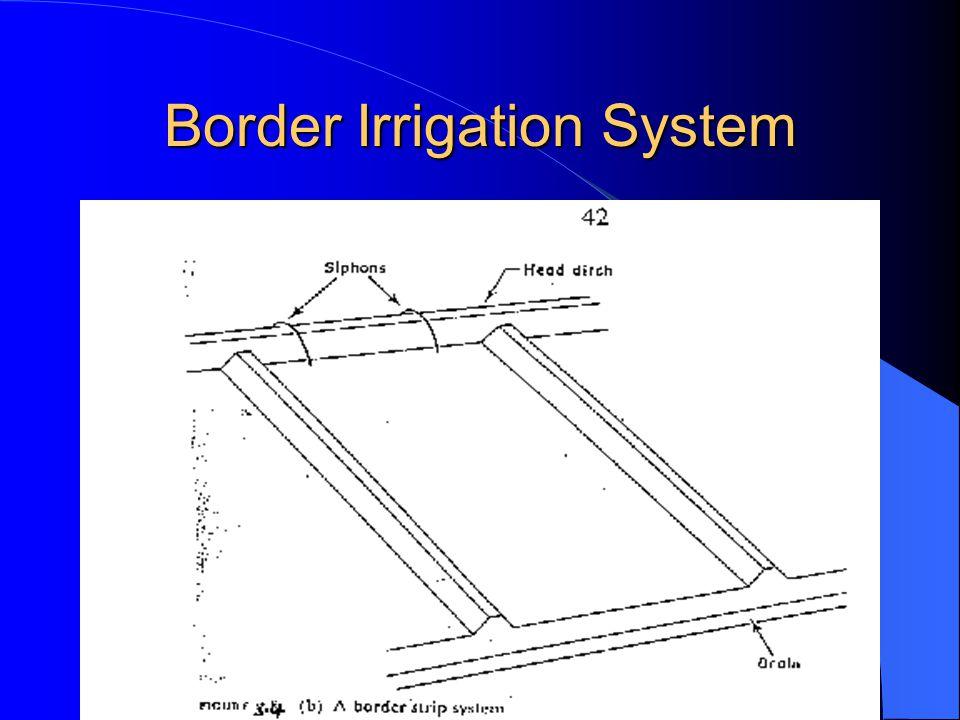 Border Irrigation System