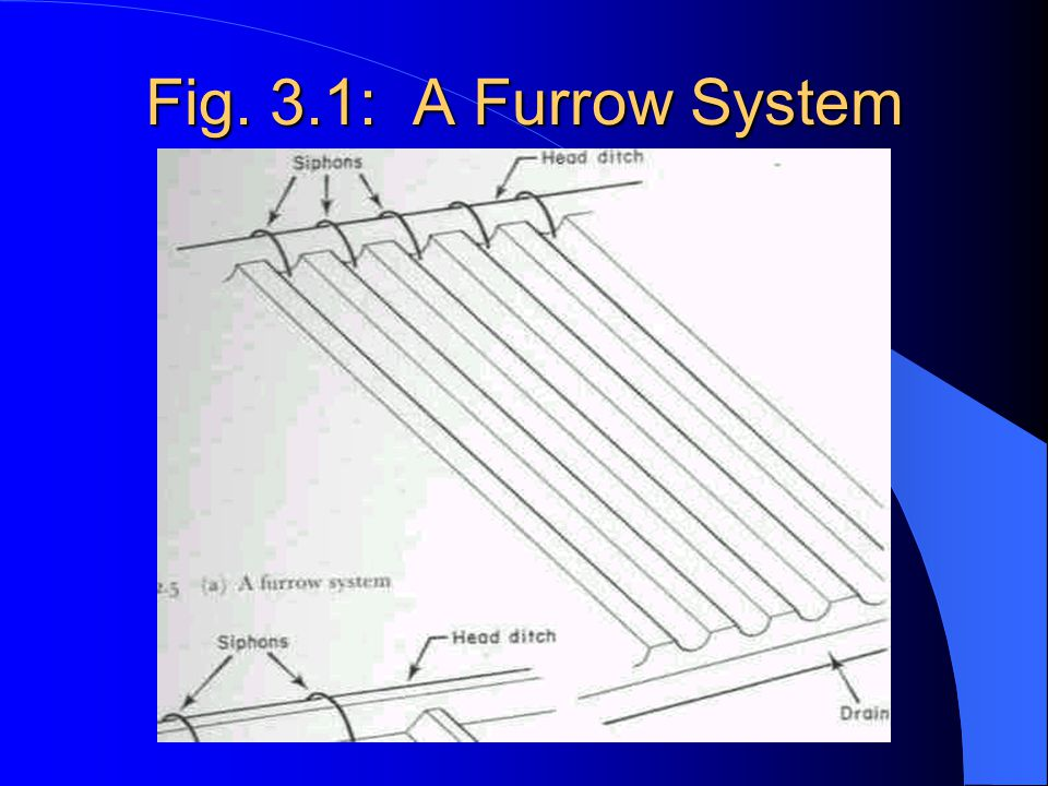 Fig. 3.1: A Furrow System