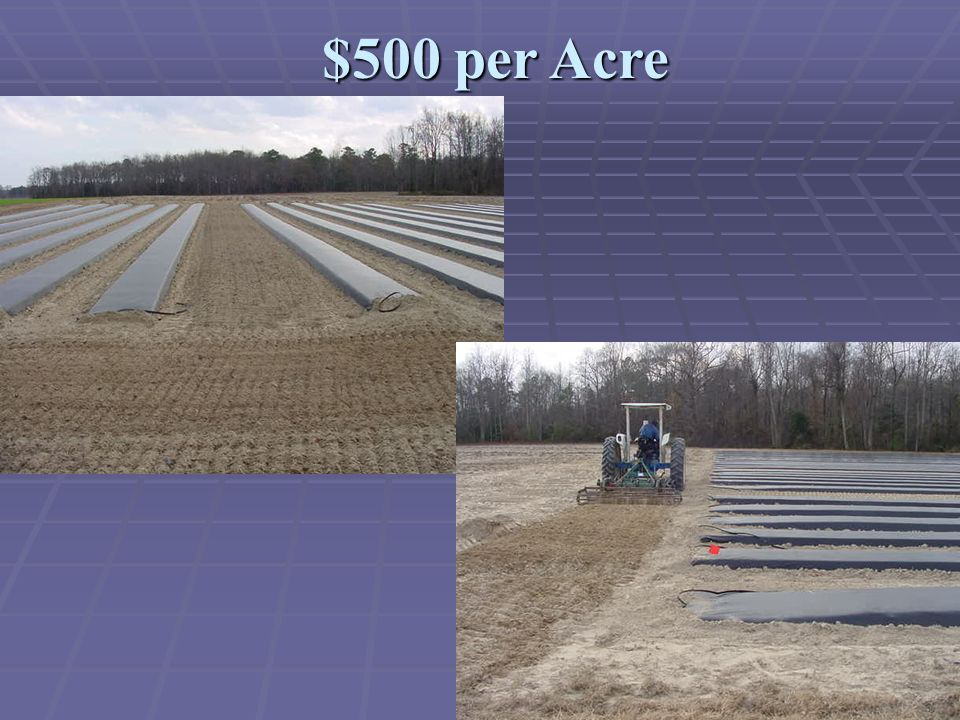 $500 per Acre