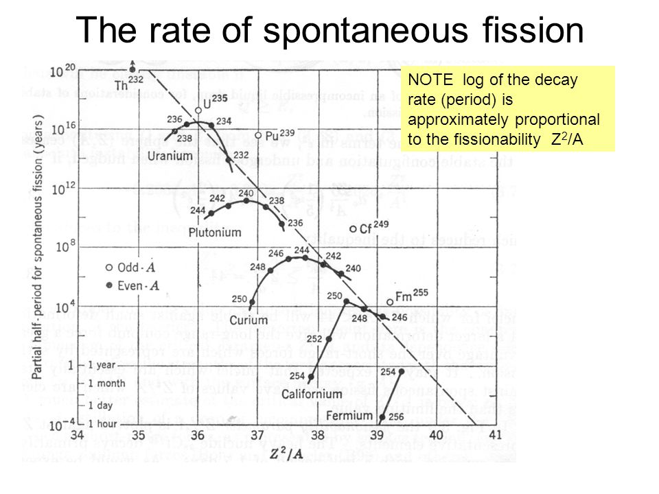The rate of spontaneous fission