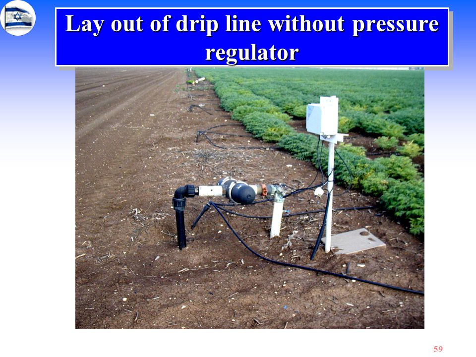 Lay out of drip line without pressure regulator