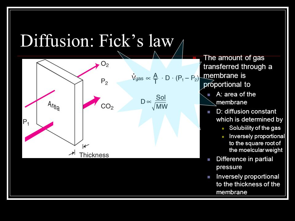 Diffusion: Fick's law The amount of gas transferred through a membrane is proportional to. A: area of the membrane.