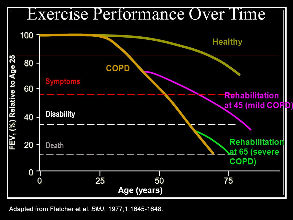 Exercise Performance Over Time