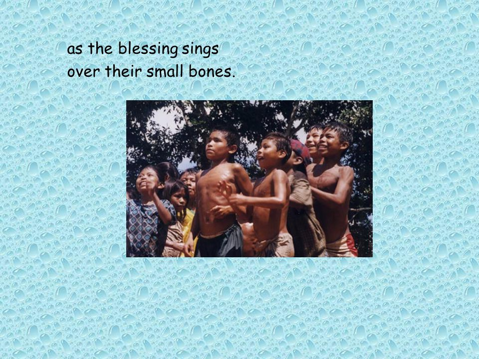as the blessing sings over their small bones.