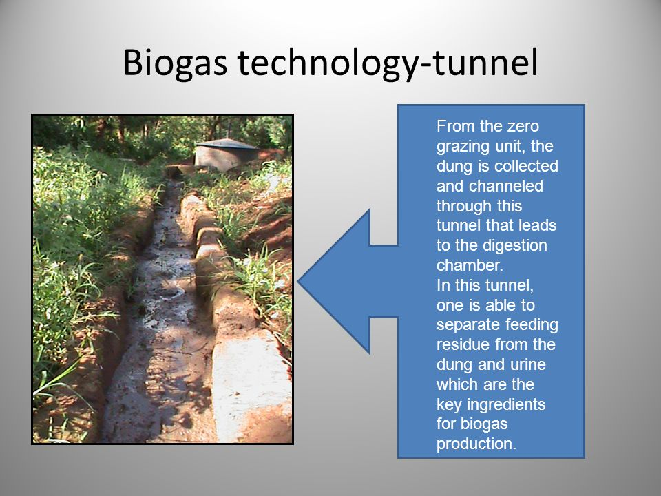 Biogas technology-tunnel