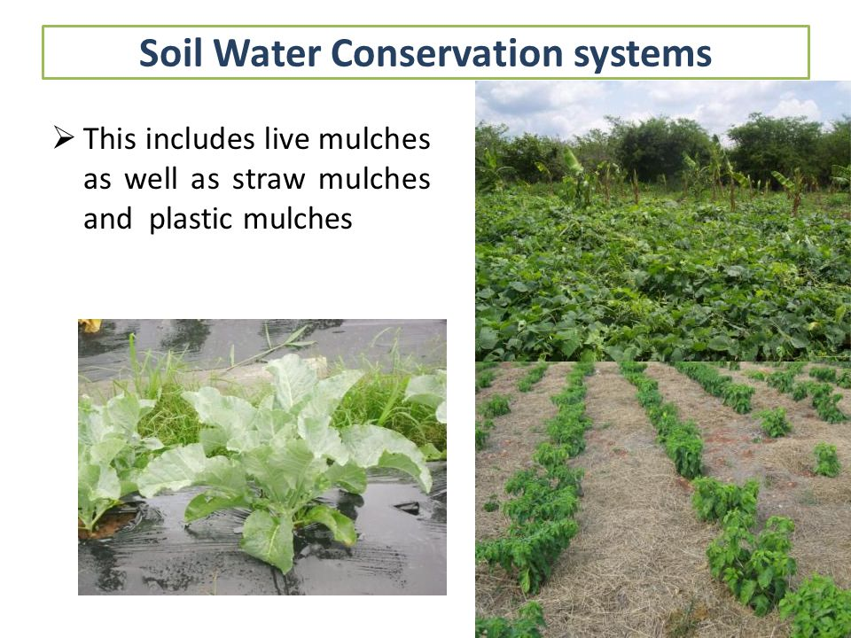 Soil Water Conservation systems