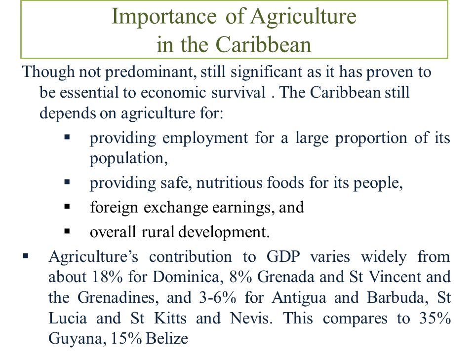 Importance of Agriculture in the Caribbean