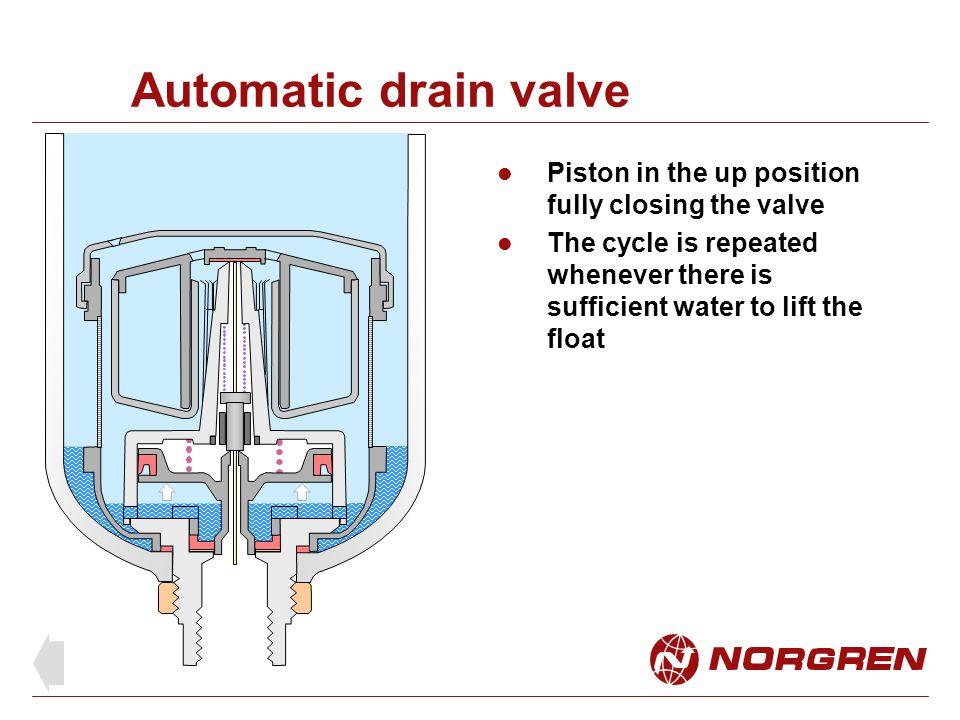 Automatic drain valve Piston in the up position fully closing the valve.