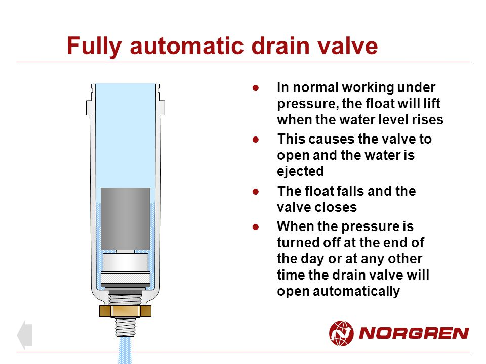Fully automatic drain valve