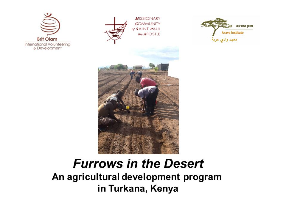 Furrows in the Desert An agricultural development program