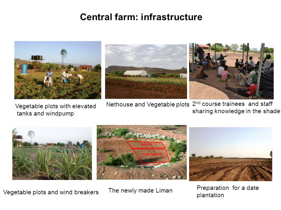 Central farm: infrastructure