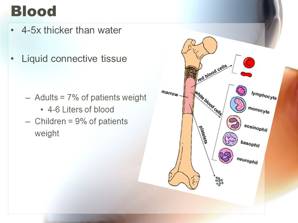 Blood 4-5x thicker than water Liquid connective tissue