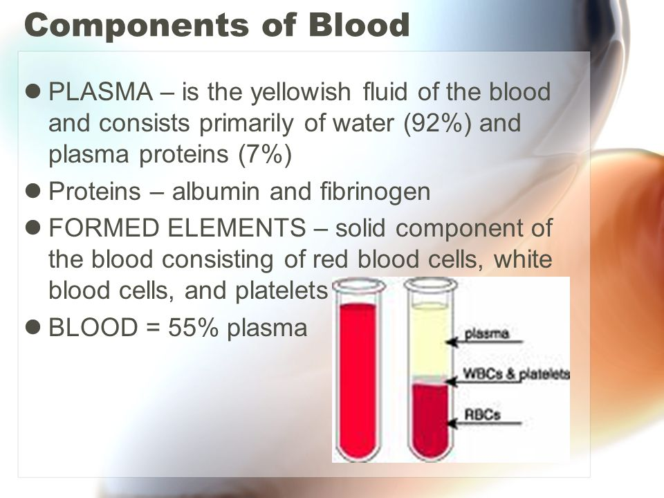 Components of Blood PLASMA – is the yellowish fluid of the blood and consists primarily of water (92%) and plasma proteins (7%)