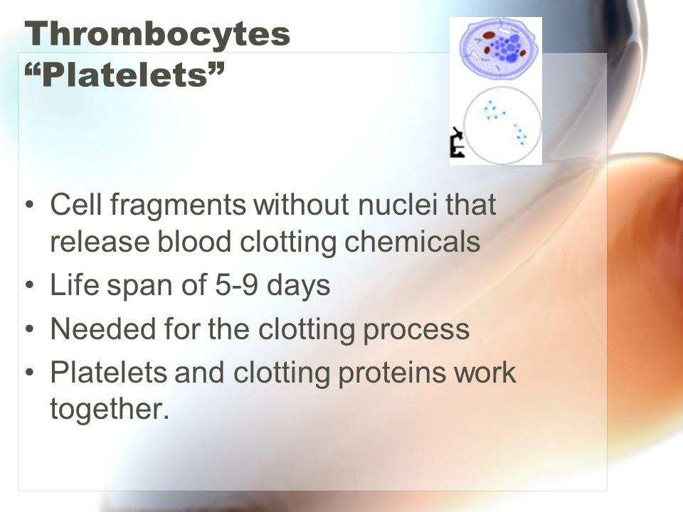 Thrombocytes Platelets