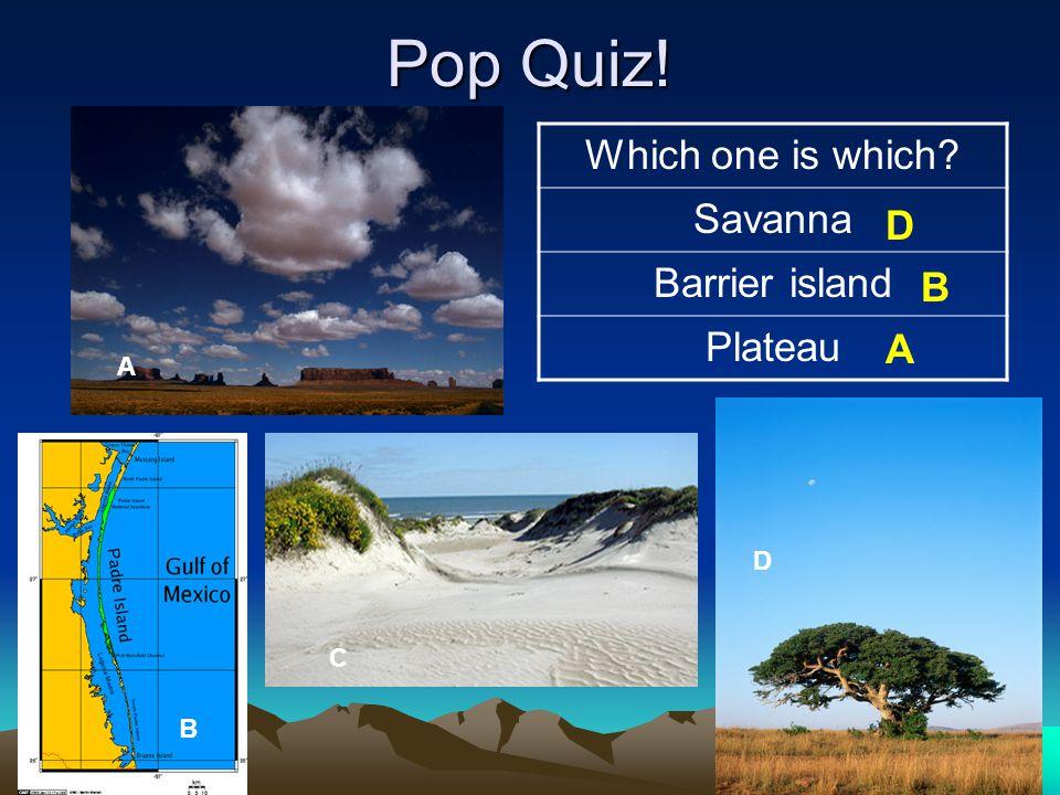 Pop Quiz! Which one is which Savanna Barrier island Plateau D B A A D