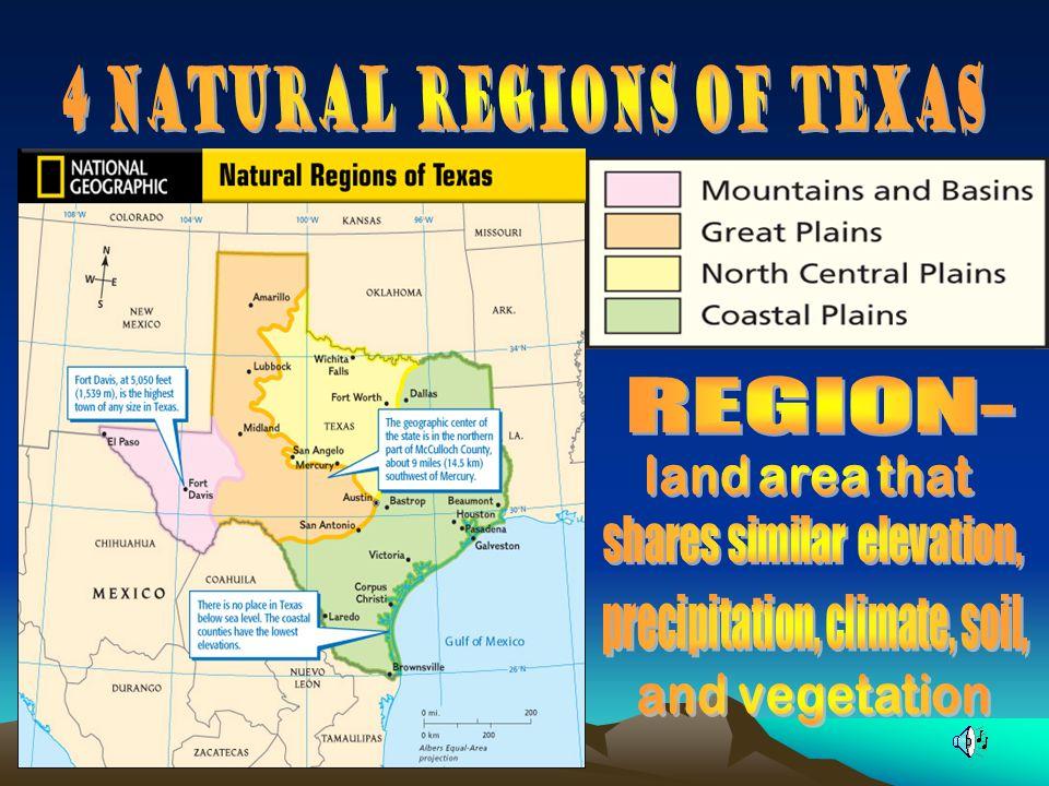 4 Natural Regions of Texas