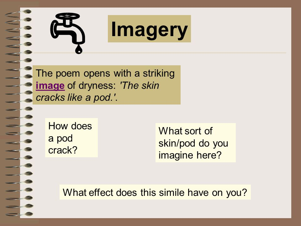 Imagery The poem opens with a striking image of dryness: The skin cracks like a pod. . How does a pod crack