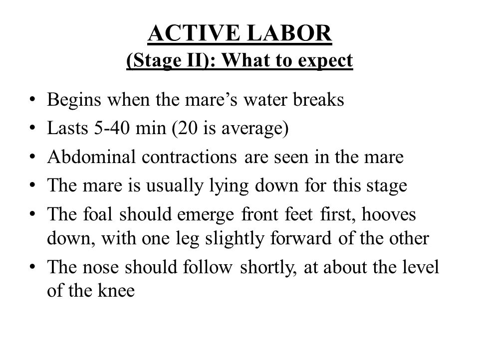 ACTIVE LABOR (Stage II): What to expect