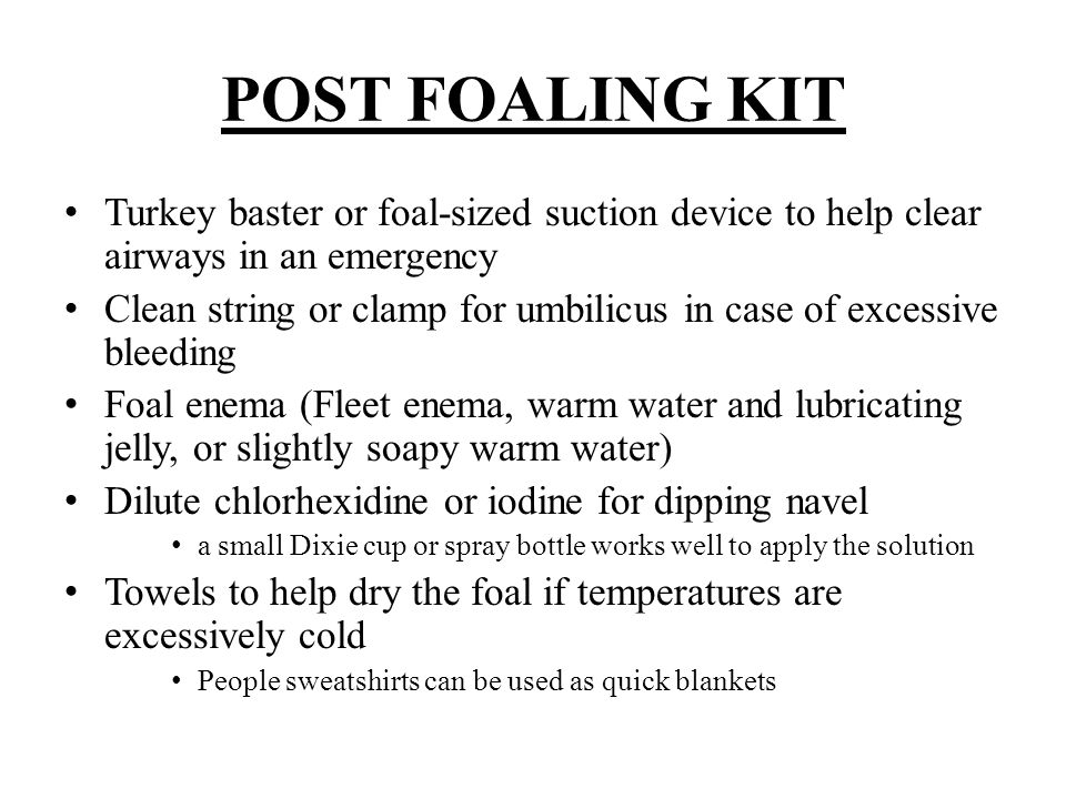 POST FOALING KIT Turkey baster or foal-sized suction device to help clear airways in an emergency.