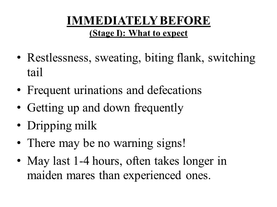 IMMEDIATELY BEFORE (Stage I): What to expect