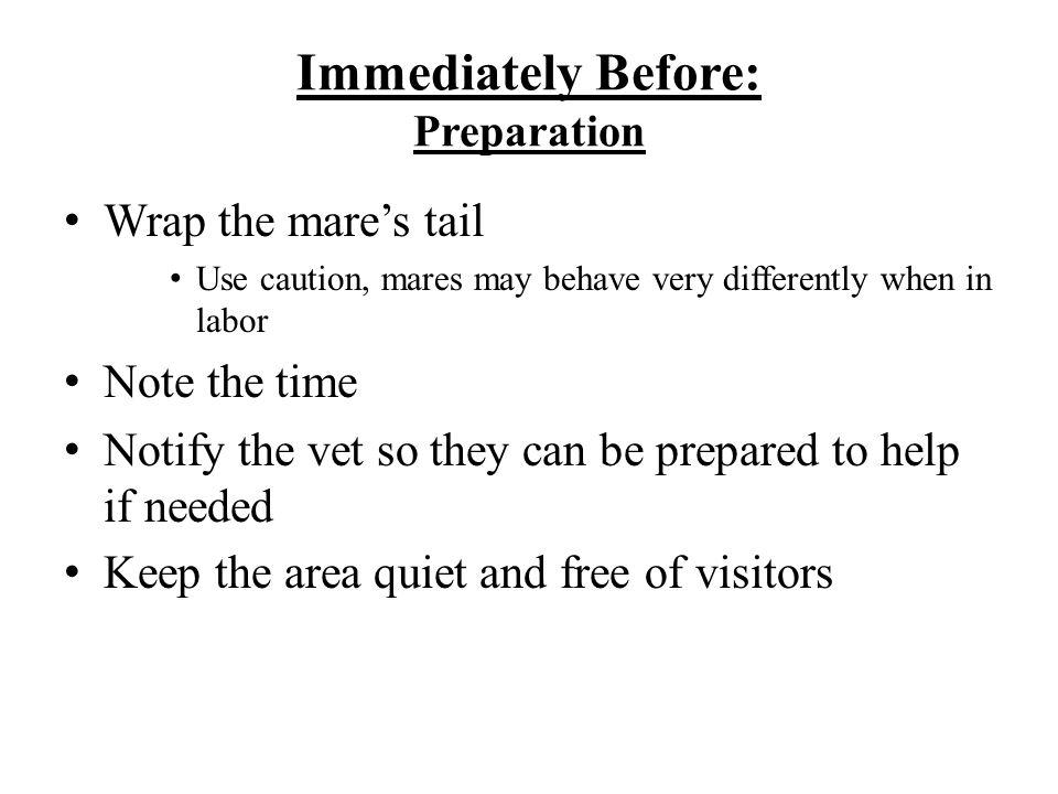 Immediately Before: Preparation