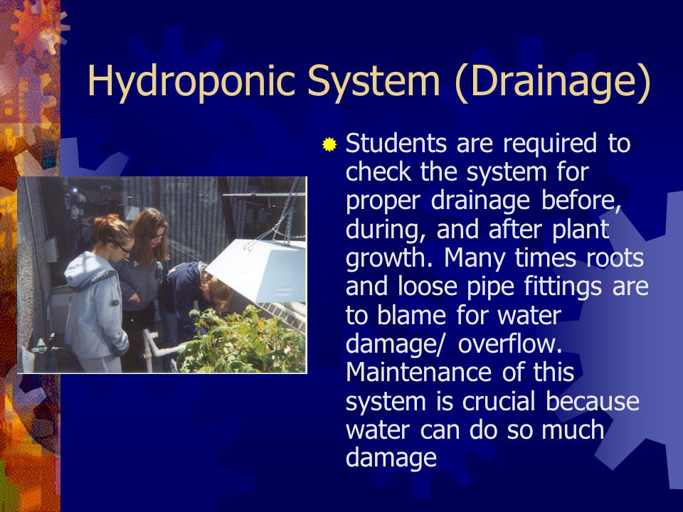 Hydroponic System (Drainage)
