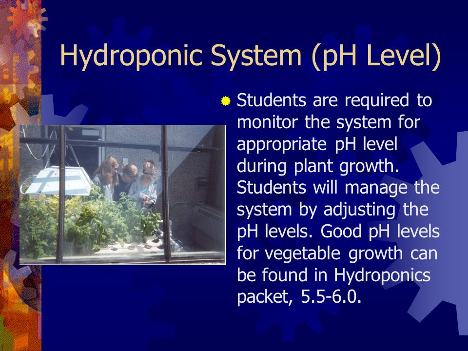 Hydroponic System (pH Level)