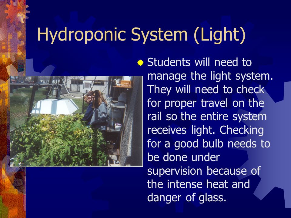Hydroponic System (Light)