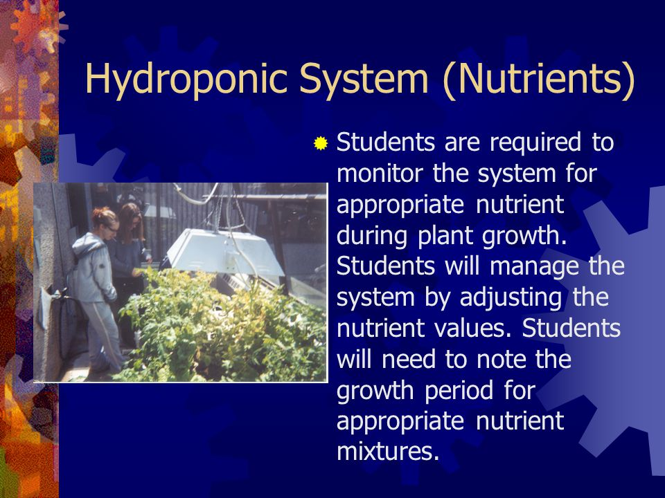 Hydroponic System (Nutrients)