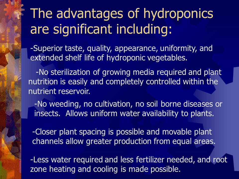 The advantages of hydroponics are significant including: