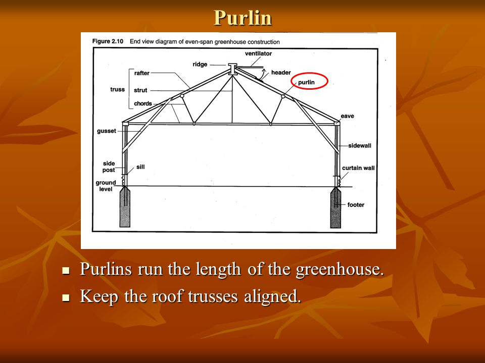 Purlin Purlins run the length of the greenhouse.