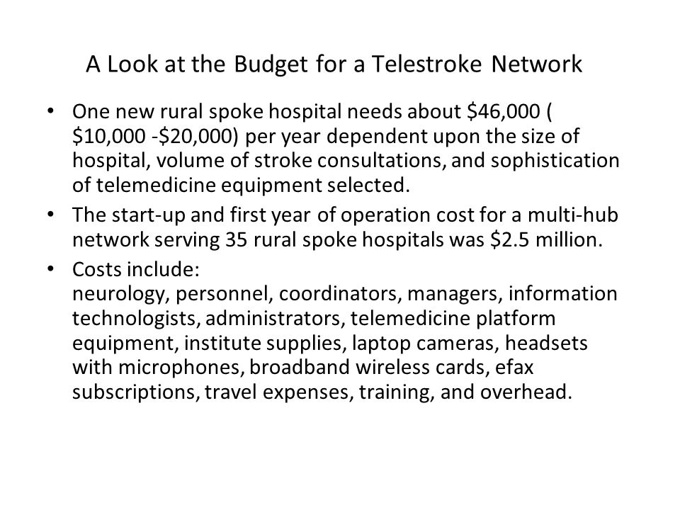 A Look at the Budget for a Telestroke Network