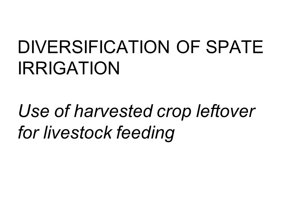 DIVERSIFICATION OF SPATE IRRIGATION Use of harvested crop leftover for livestock feeding