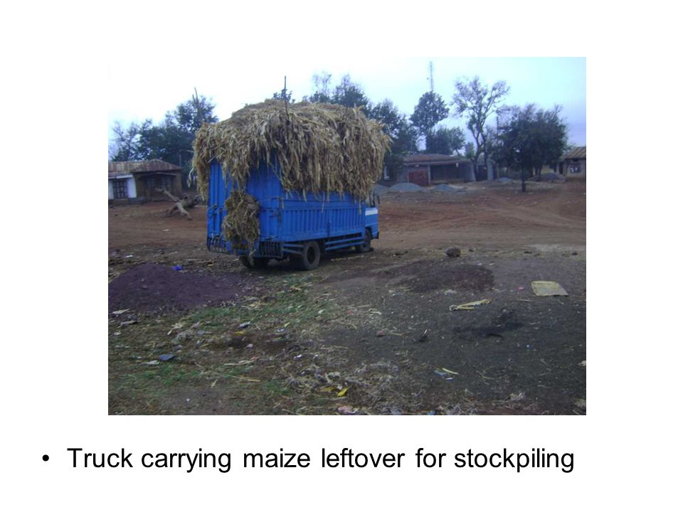 Truck carrying maize leftover for stockpiling