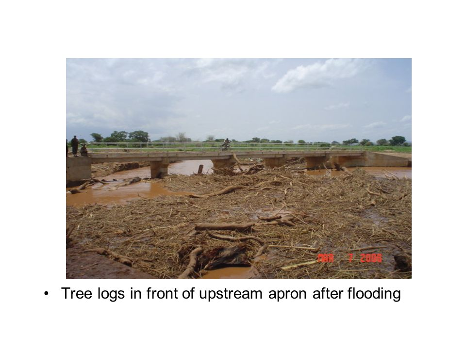 Tree logs in front of upstream apron after flooding