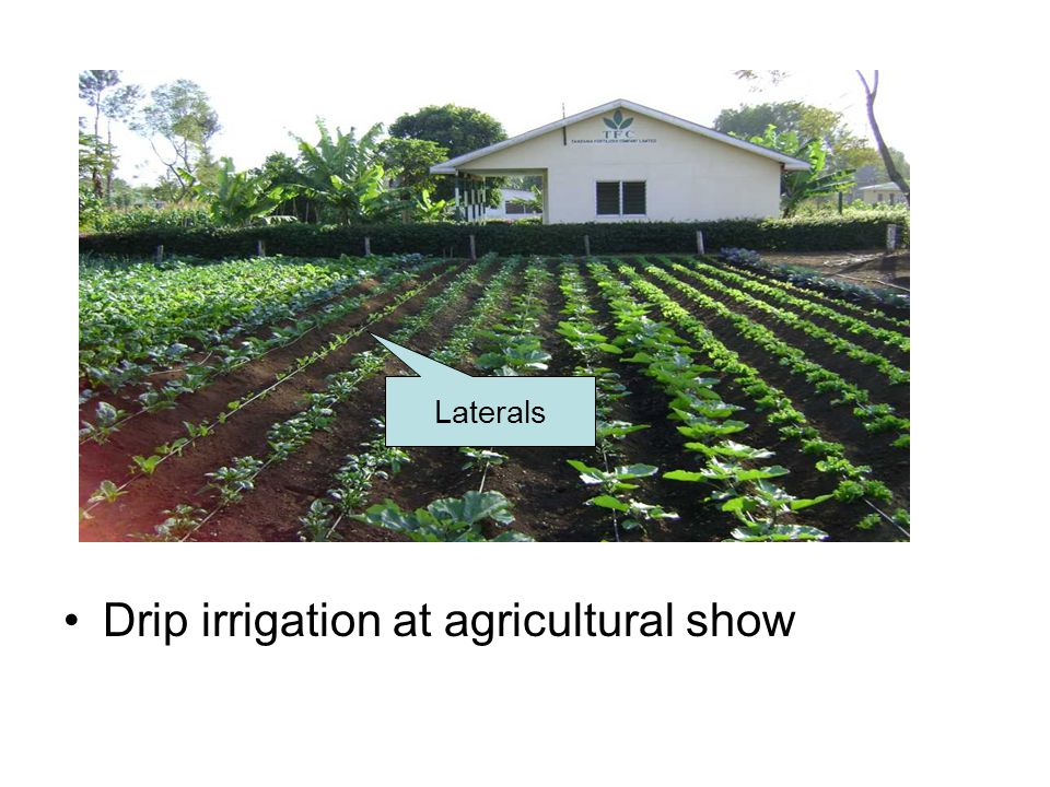 Drip irrigation at agricultural show