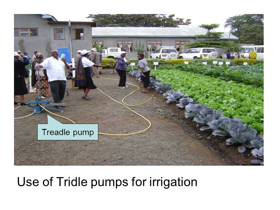 Use of Tridle pumps for irrigation