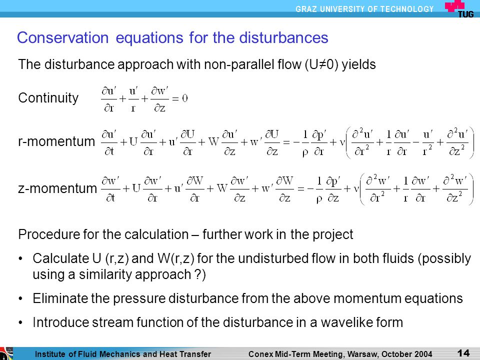 Conservation equations for the disturbances