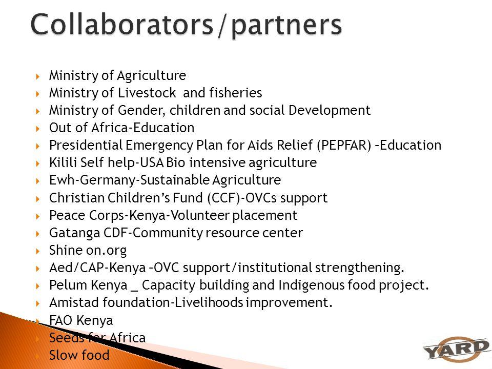 Collaborators/partners