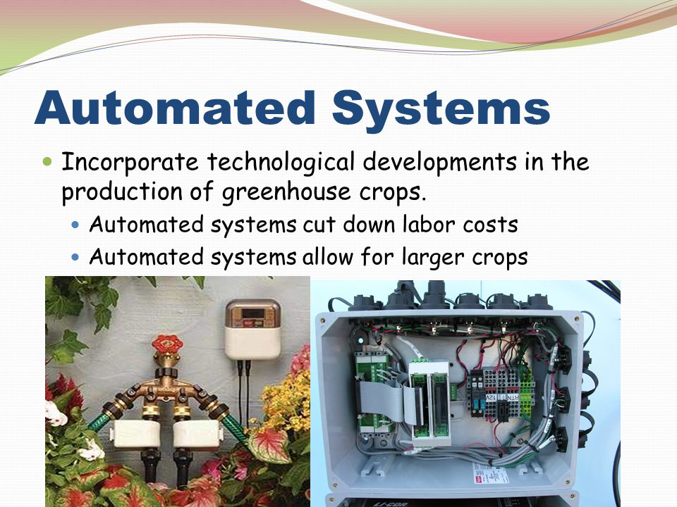 Automated Systems Incorporate technological developments in the production of greenhouse crops. Automated systems cut down labor costs.